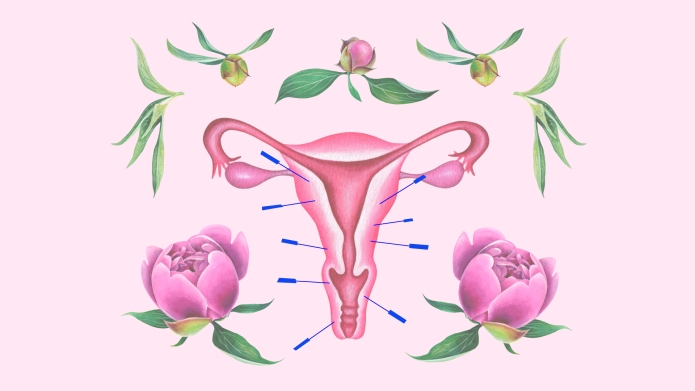 acupuncture menstrual cycle