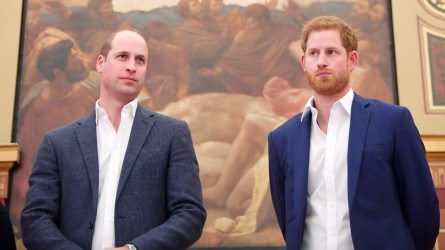 Prince William and Prince Harry attend