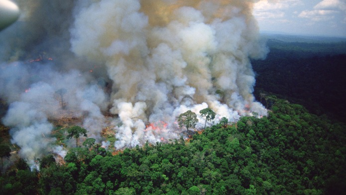 Amazon rain forest afire.VARIOUS