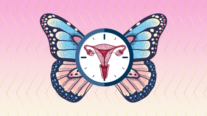how-your-vagina-and-vulva-changes-in-your-30-40s-and-beyond