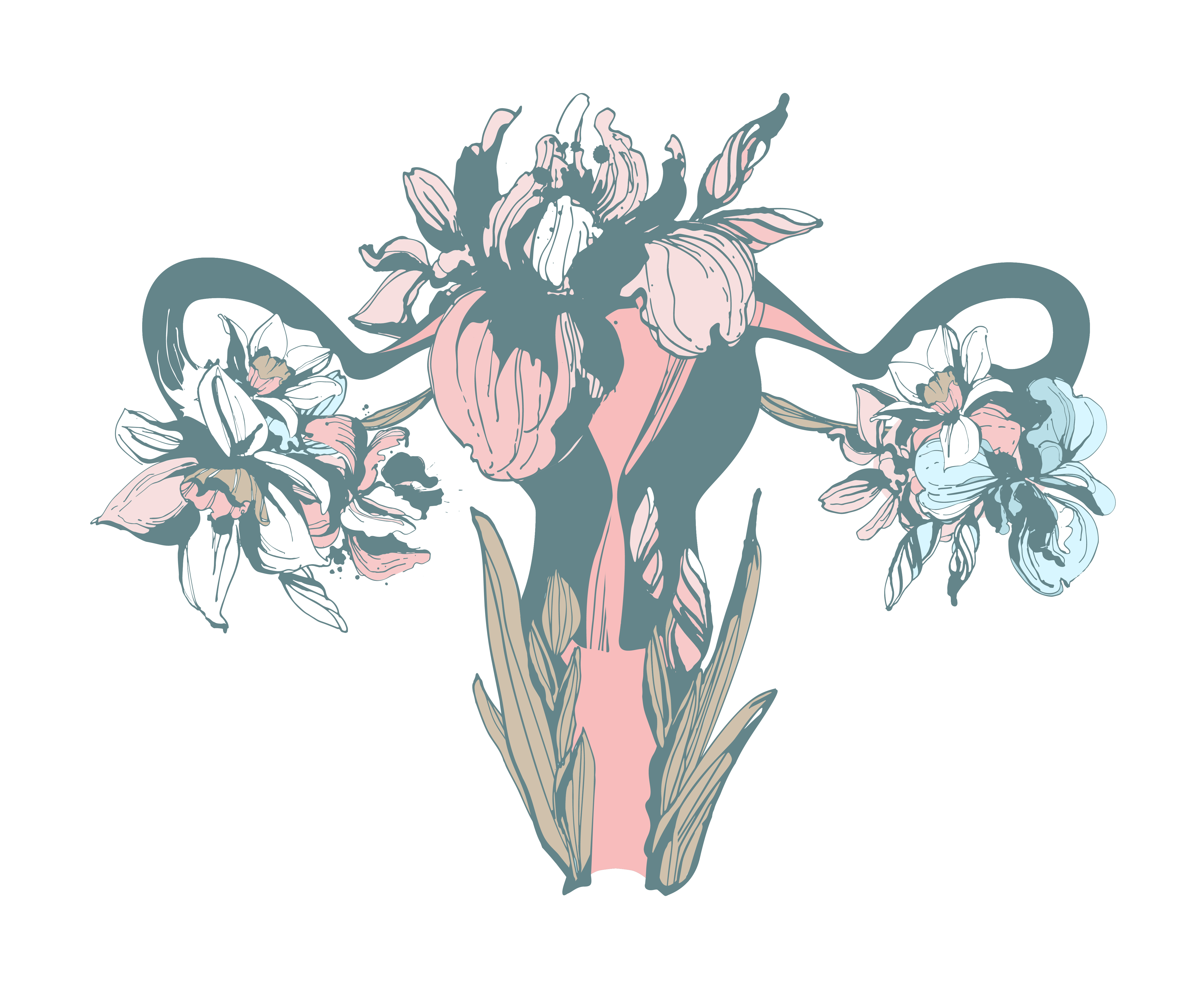 uterus-change-aging