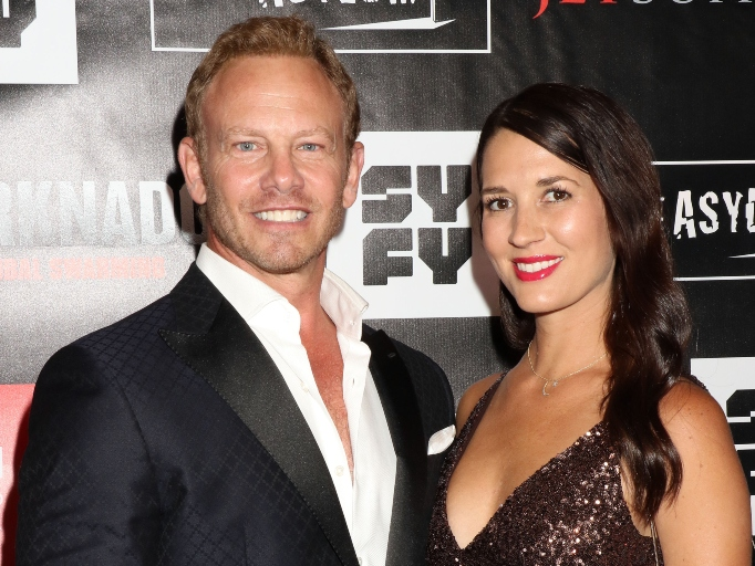 Ian Ziering and Erin Ludwig are divorcing after nine years of marriage