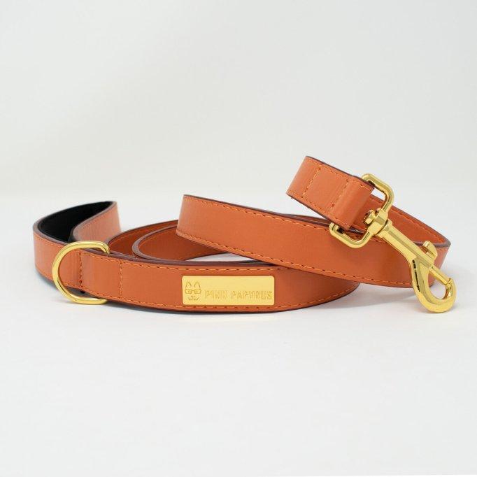 Vegan Leather Leash and Collar