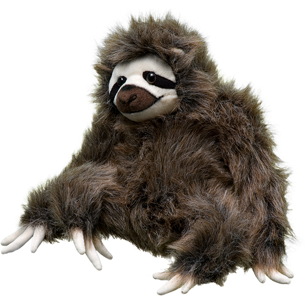 Holiday Gifts Even Angsty Teens Will Love: Adopt a Three-toed Sloth