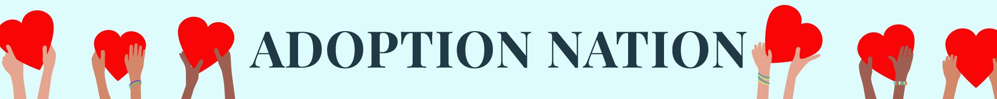 adoption nation