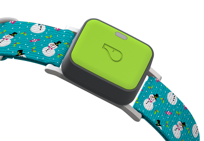 Whistle Go Tracking Device