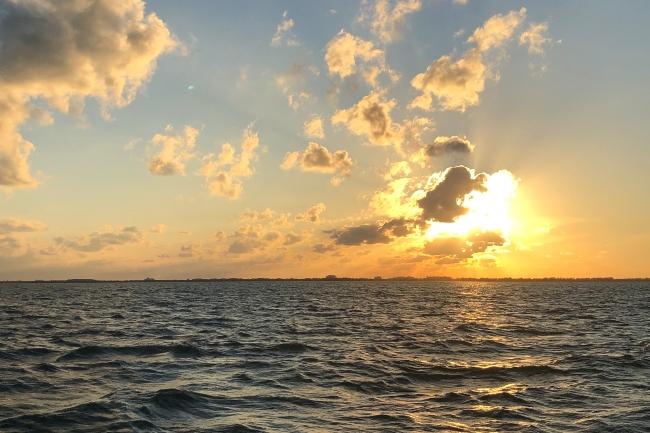 ocean Cayman Islands