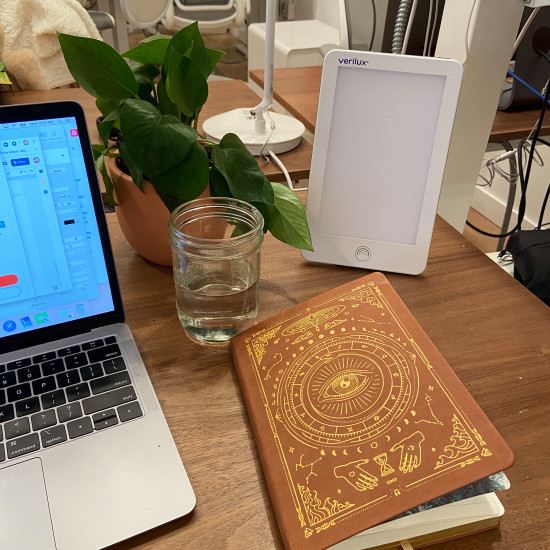 My Hydratitude journal ft. happy light and desk plant, Florence.