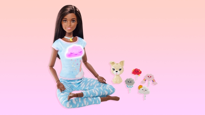 Barbie wellness
