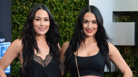Brie Bella and Nikki Bella pregnant