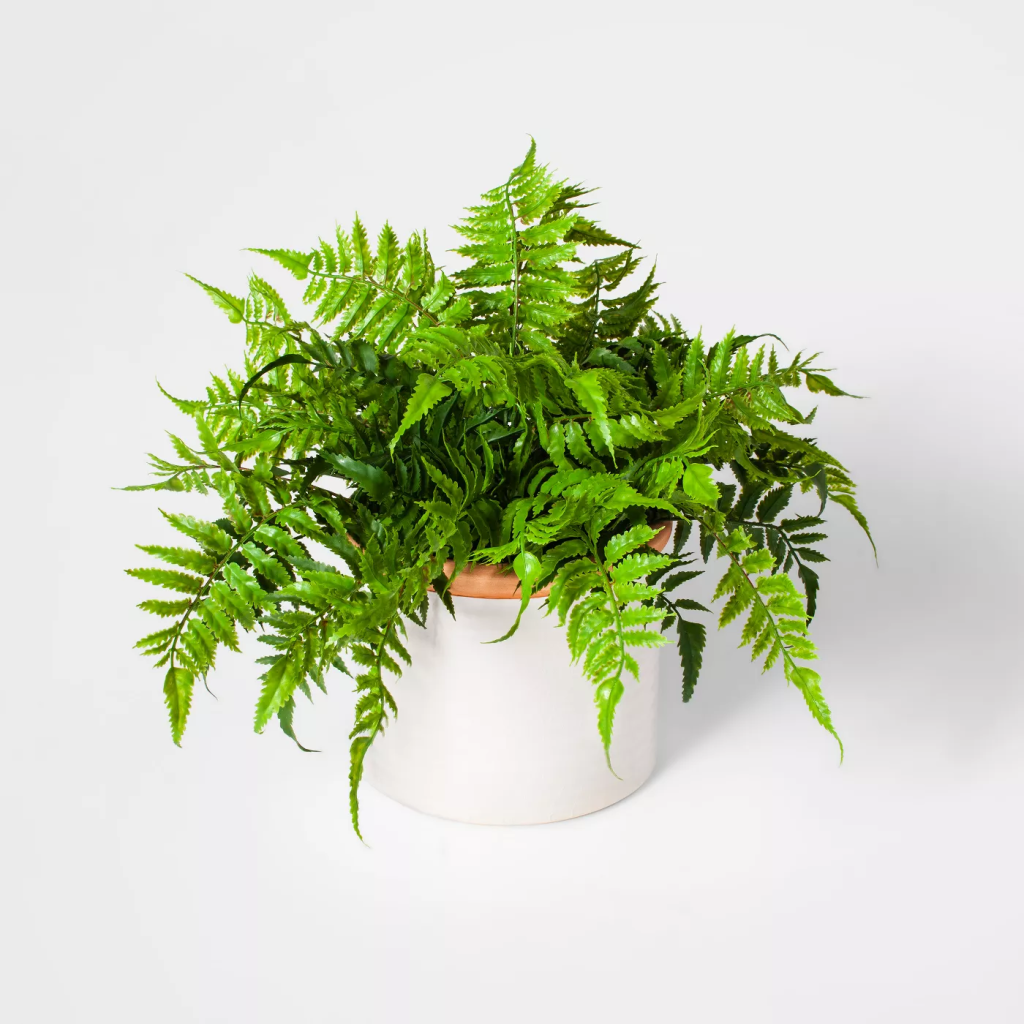 Threshold Potted Artificial Boston Fern