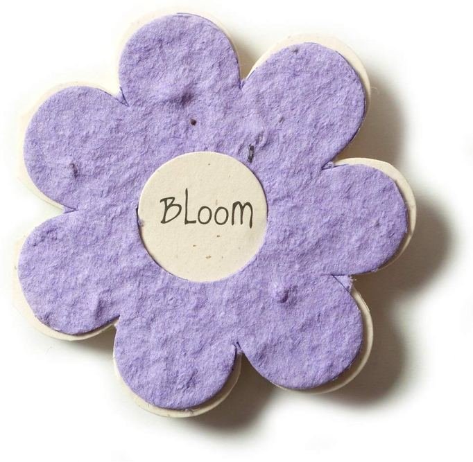 Class Valentine's Day Gifts Seed Flower Cards