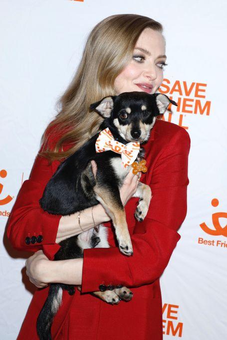 Amanda Seyfried holding a puppy
