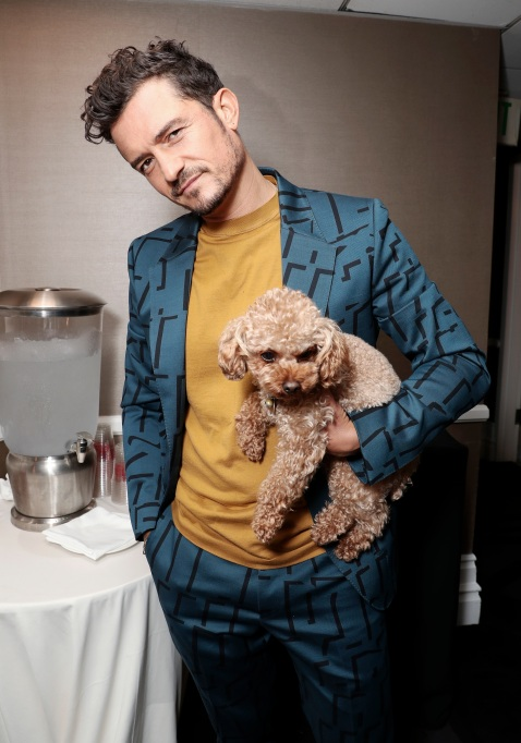 Orlando Bloom with Toy Poodle Puppy