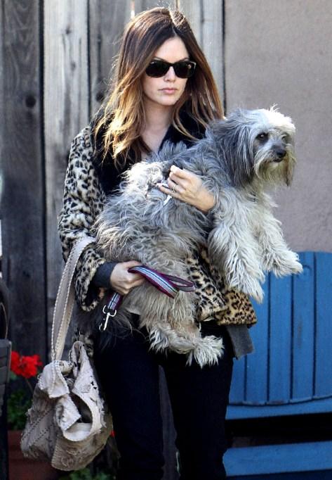 Rachel Bilson with her Puppy Thurman Murman