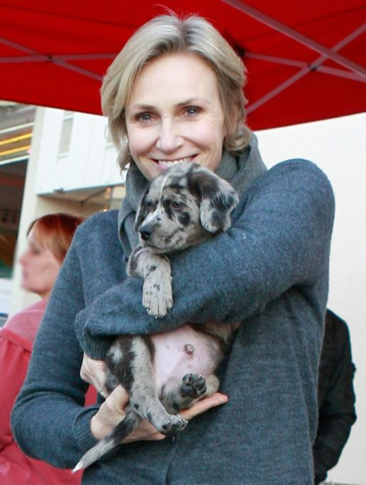 Jane Lynch with Puppy Francis