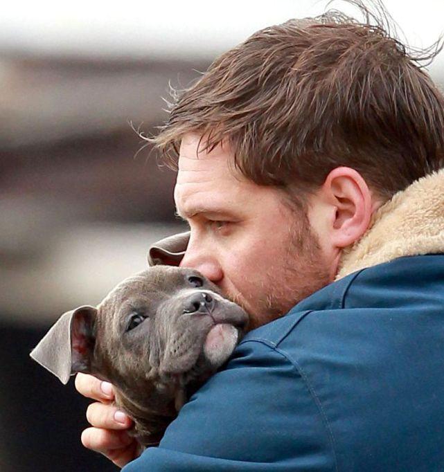Tom Hardy Hugging a Puppy