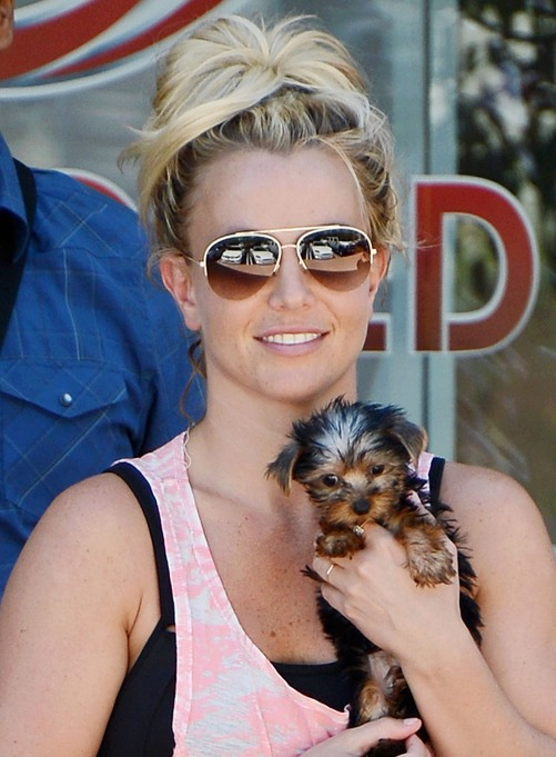 Britney Spears with a Tiny Puppy