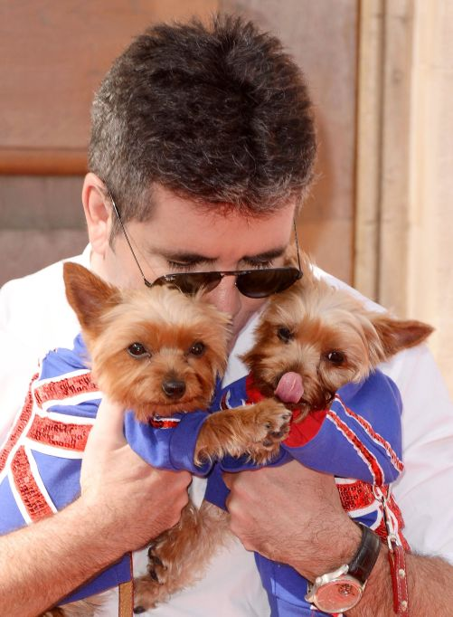 Simon Cowell with Puppies Squiddly and Diddly