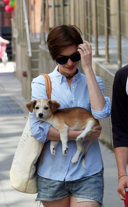 Anne Hathaway with her Puppy Edward