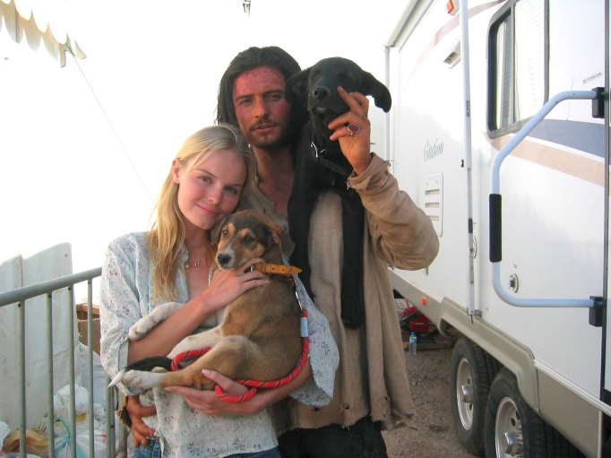 Orlando Bloom and Kate Bosworth with Stray Puppies Adopted in Morocco