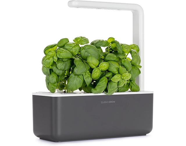 Click & Grow Best Herb Kit on Amazon