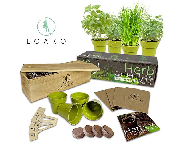 Loako Best Indoor Herb Kit Amazon