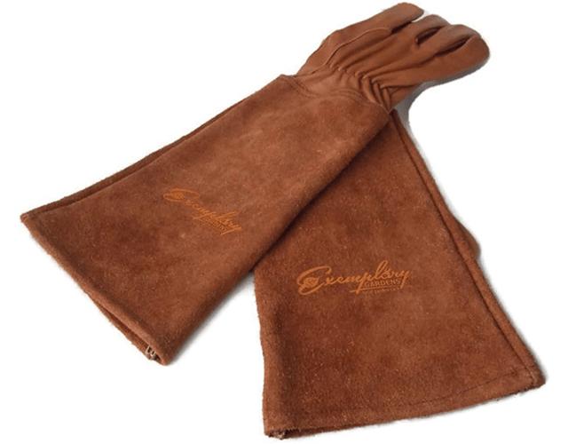 Rose Pruning Gloves Best Gardening Gloves for Women on Amazon