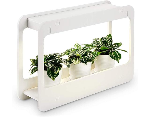 Torchstart Best Herb Kits on Amazon