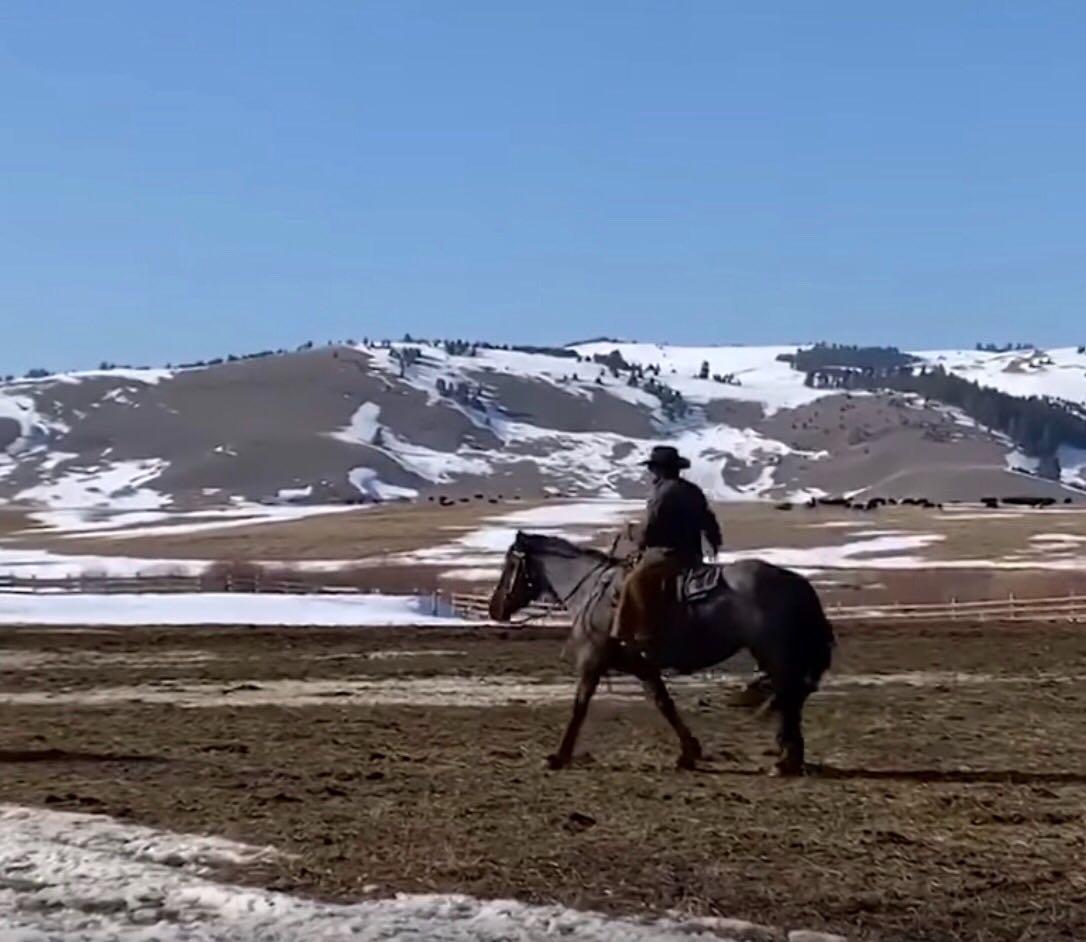 Kelly Clarkson Montana Ranch