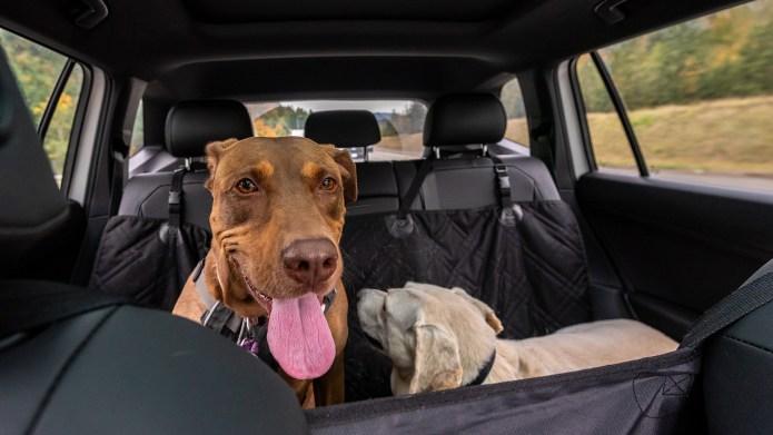 Best car seat protectors on Amazon