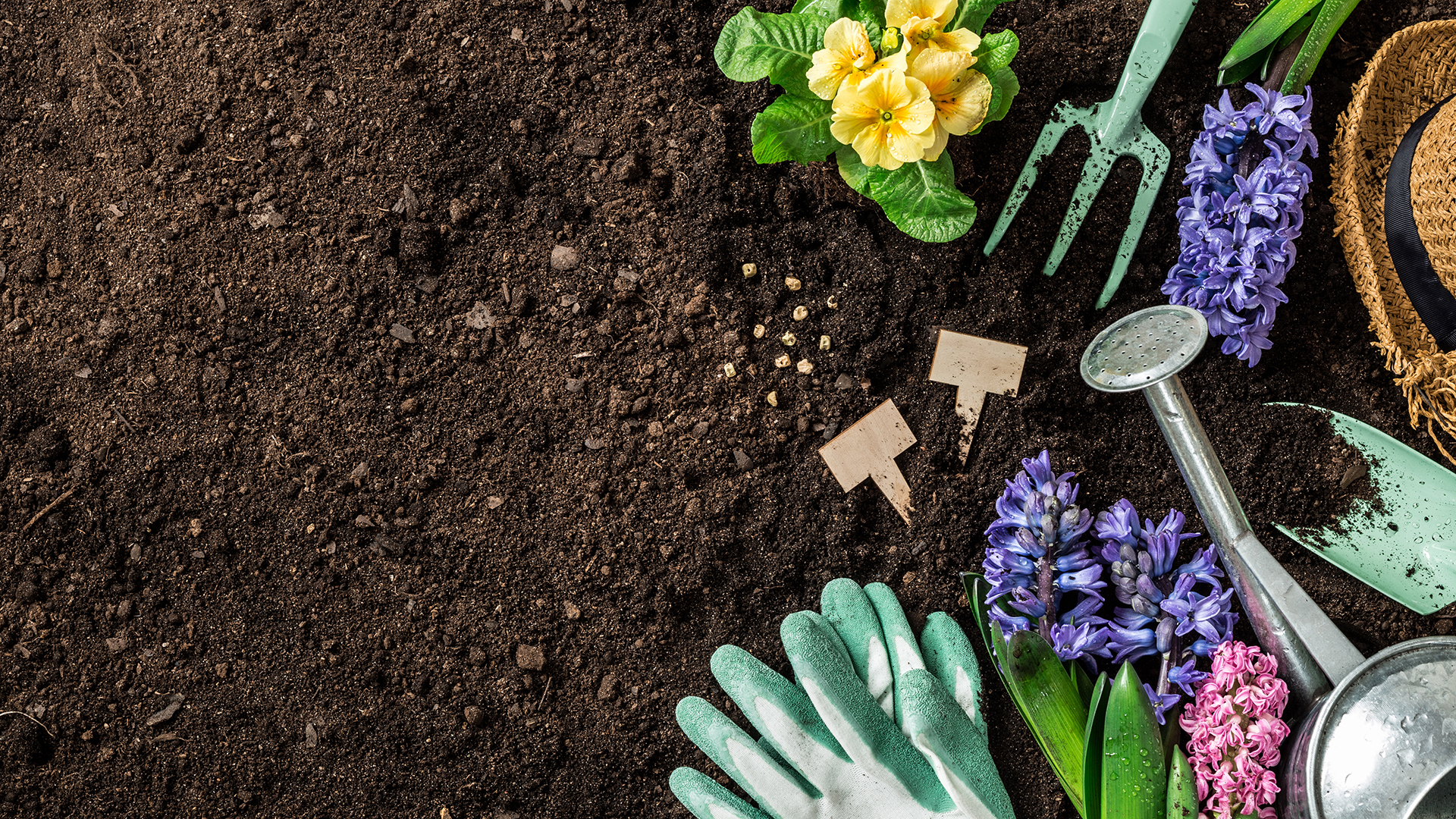 The Best Gardening Tools On Amazon Sheknows