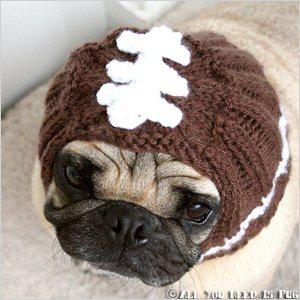 Football Helmet Dog Hat