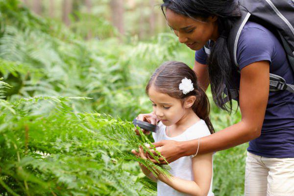 mother looking at leaves with daughter