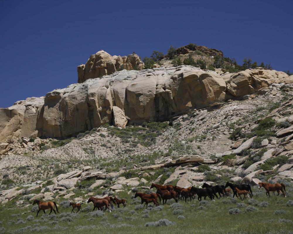 Kanye West Wyoming West Lake Ranch
