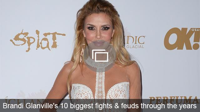 Brandi Glanville feuds slideshow
