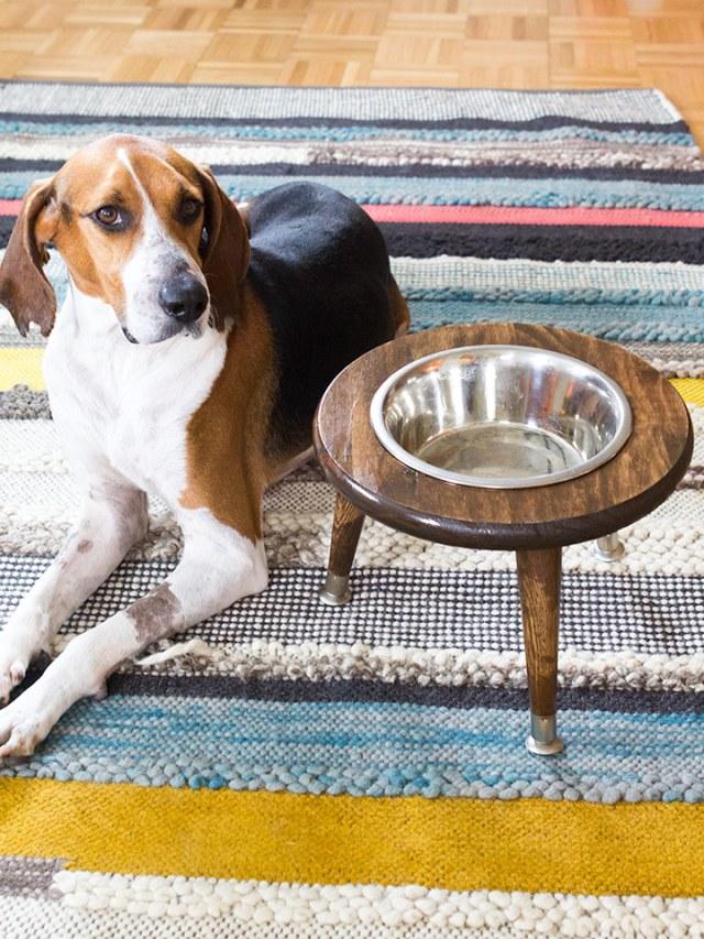 Midcentury dog bowl