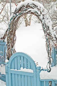 Winter decor guide: Outdoor