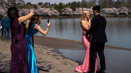 Parents come up with prom alternatives