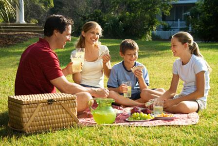 Family picnic at the park