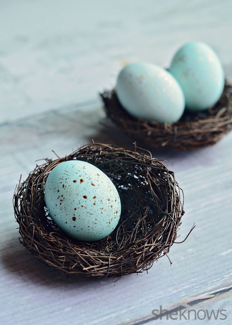 Natural dyed robin's eggs