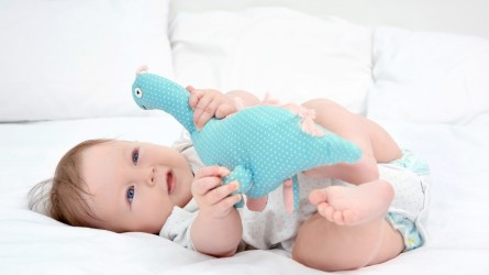 Best Dinosaur Toys for Babies