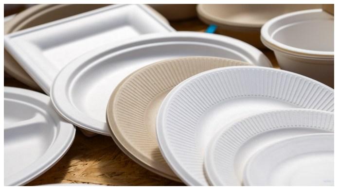 best paper plates
