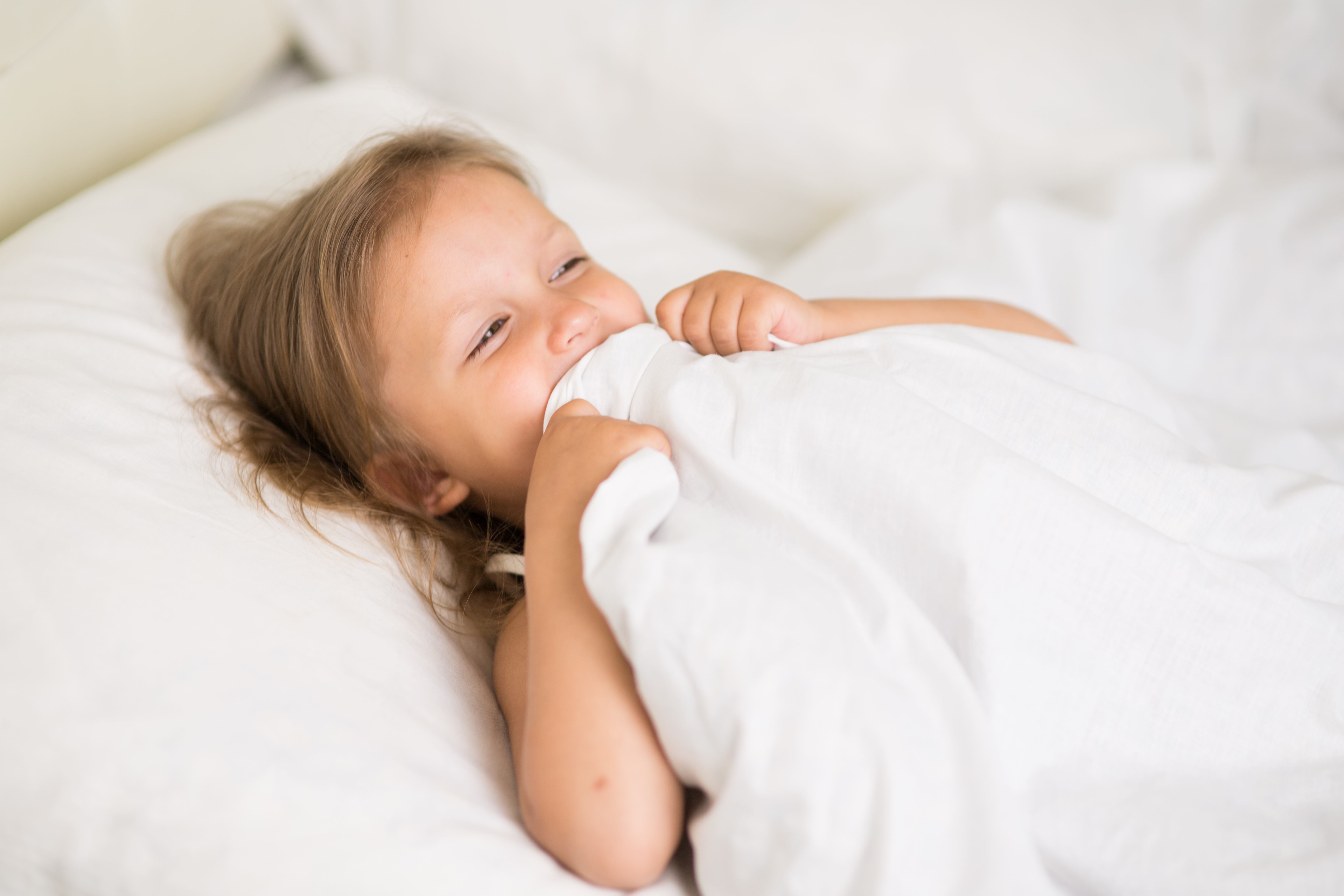 The Best Twin Mattresses For Toddlers 2020 Update Sheknows