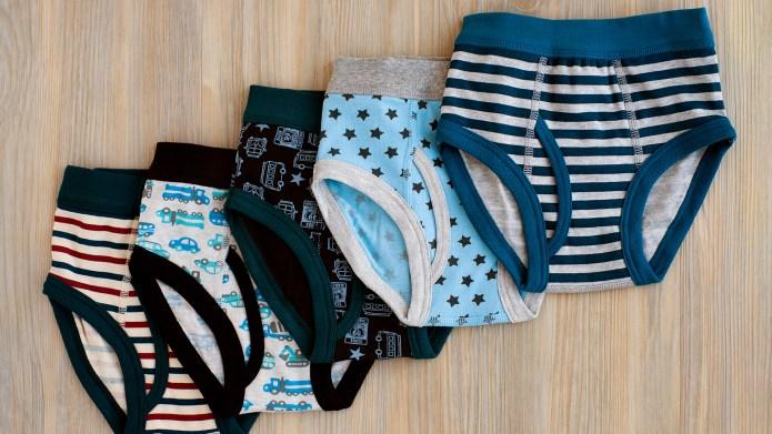 best potty training underwear amazon