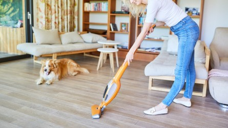 Best Quiet Vacuums on Amazon