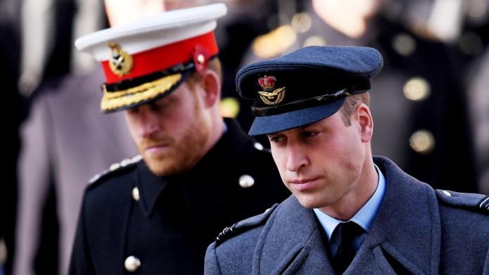 Prince William & Prince Harry's 'Profound'