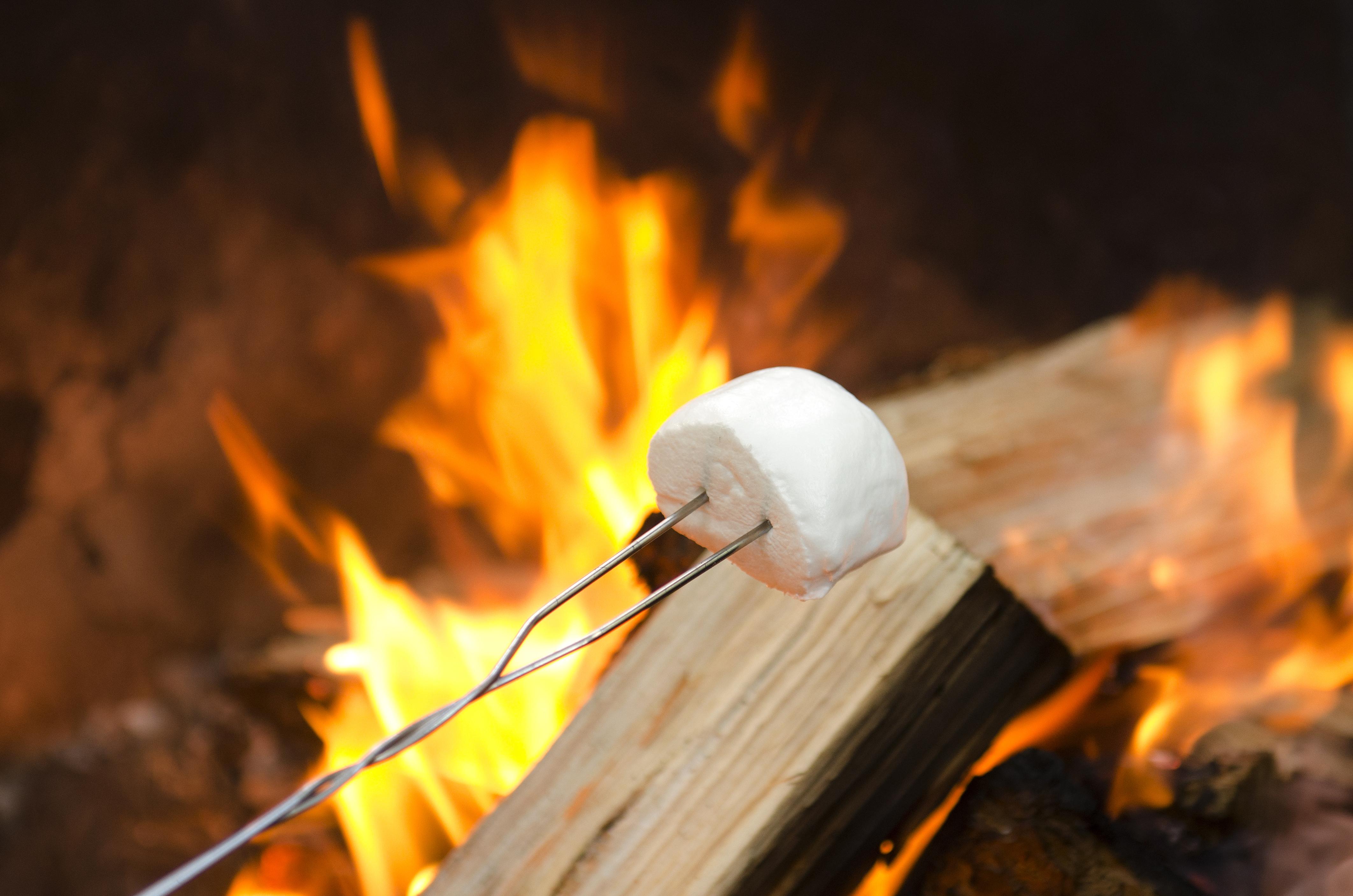roasting s'mores backyard camping