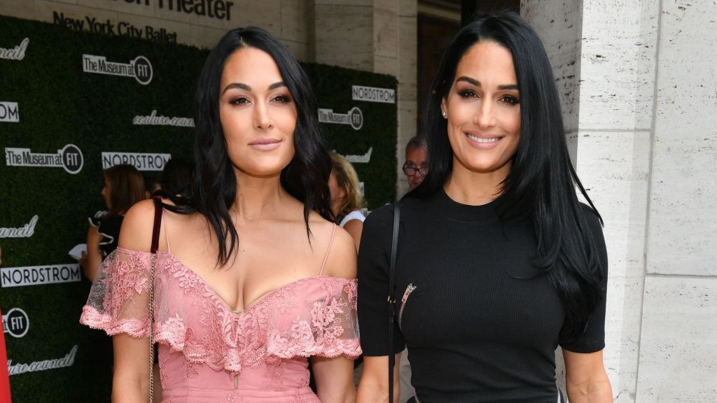 Pregnant Nikki, Brie Bella Pose Nude in Joint Maternity