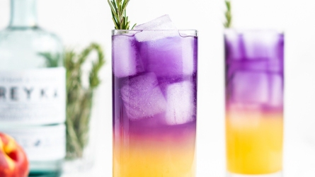 Sake Fizz cocktail